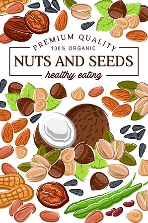 Natural raw and vegetarian food, nuts and seeds, organic nutrition. Vector healthy eating gmo free superfood coconut, hazelnut or walnut and almond, sunflower seeds and pistachio nuts
