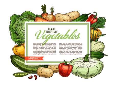 Vegetables, farm veggies and organic vegetarian food health benefits. Vector carrot and turnip, celery and onion leek, tomato or broccoli cabbage and garlic, beans and peas, kohlrabi and squash