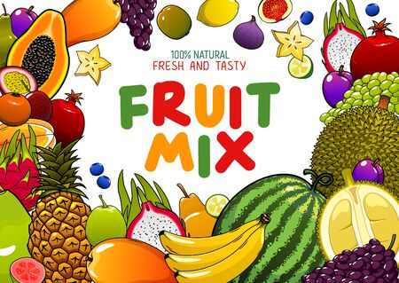 Tropical fruits mix, juicy multifruit banana, pineapple, mango and watermelon. Vector natural organic papaya, tropic durian and exotic dragon fruit, pomegranate and grape, blueberry and apple Ilustracja