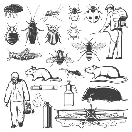 Bocetos de control de plagas con insectos, insecticidas, roedores y exterminadores. Mosquito, cucaracha, hormiga y mosca, pesticida en aerosol, rata y ácaro o garrapata, araña, termita y ratón, pulga, topo, saltamontes