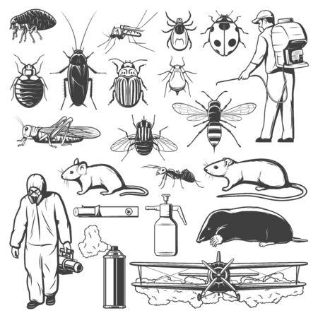 Schädlingsbekämpfungsskizzen mit Insekten, Insektiziden, Nagetieren und Kammerjägern. Mücke, Schabe, Ameise und Fliege, Pestizidspray, Ratte und Milbe oder Zecke, Spinne, Termite und Maus, Floh, Maulwurf, Heuschrecke