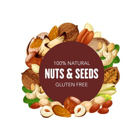 Nuts and natural seeds, organic raw and vegetarian food, healthy superfood nutrition. Vector GMO free hazelnut or walnut and almond, sunflower seeds and pistachio nuts, peanut and macadamia Ilustrace