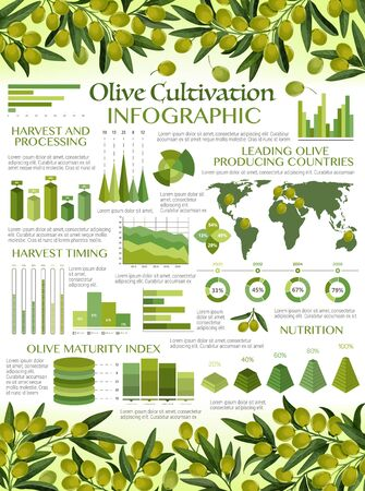 Olive oil infographics, harvest timing and processing, maturity index and nutrition. Vector graphs and diagram elements of green olives growing, extra virgin oil consumption, consumer market analysis Иллюстрация