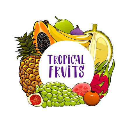 Tropical fruits isolated banner. Vector pineapple and grapes, banana and citrus tangerine, feijoa and fig. Papaya, starfruit and lychee, passionfruit and guava, tropical farm grocery fruits harvest