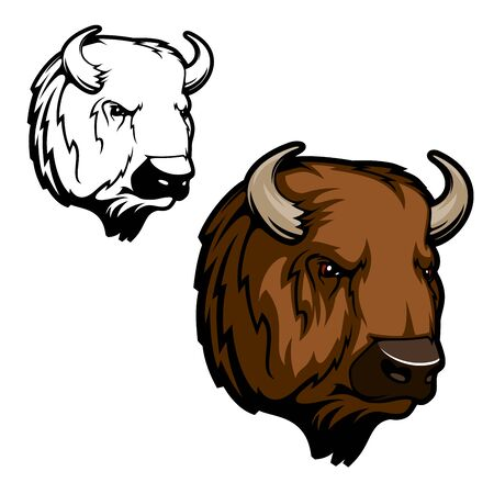 American bison or buffalo animal vector design of hunting club, sport team or zoo mascot. Head of wild ox bull with brown fur and horns, hoofed and horned mammal themes Çizim