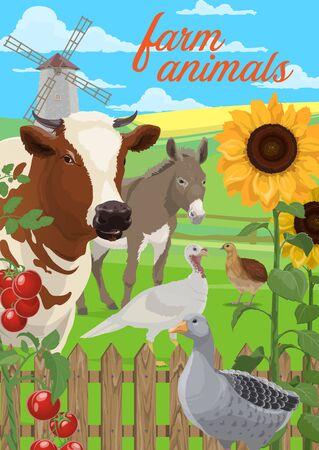 Farm animals and vegetables vector design. Agriculture and farming poster of farmer field and yard with cow, goose and quail, turkey and donkey, tomatoes, sunflowers, windmill and wooden fence