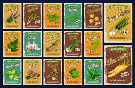 Spices, farm market herb seasonings and organic food condiments price cards. Vector lavender, savory and parsley, fennel and coriander spice, angelica and garlic, lemongrass seasoning and celery