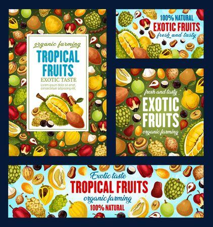 Tropical fruits, farm market organic natural food posters and banners. Vector exotic fruits harvest of pandanus, bergamot and longkong, durian and feijoa, tangerine citrus and jambolan tropic fruit Illustration