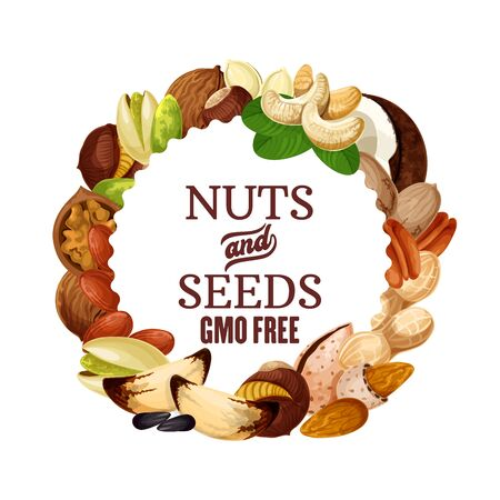 Nuts and seeds, organic GMO free raw vegetarian food, healthy superfood nutrition. Vector natural peanut, hazelnut or walnut and almond, coconut, sunflower seeds, pecan and pistachio nuts Archivio Fotografico - 138015582