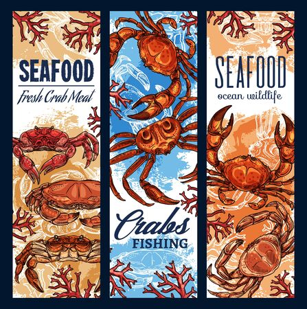 Seafood fishing sketch banners, ocean fish and sea food fishery industry. Vector fisher market seafood crabs and lobsters meat, ocean wildlife, sea fisherman club and gourmet
