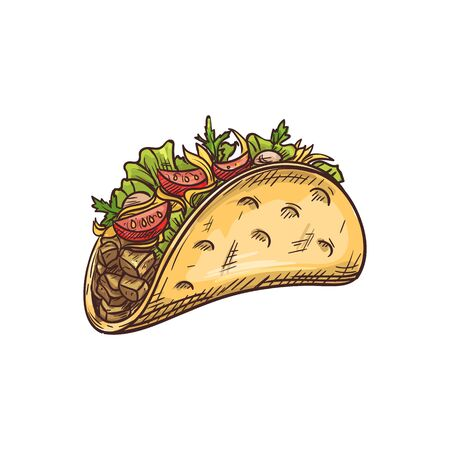 Tacos mexican fastfood snack isolated sketch. Vector fried tortilla with vegetable beans lettuce tomatoes and meat Illustration