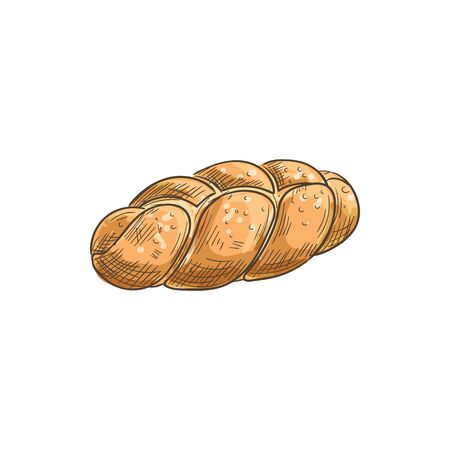 Braided bread with sesame sketch isolated pastry food. Vector bakery product of wheat dough