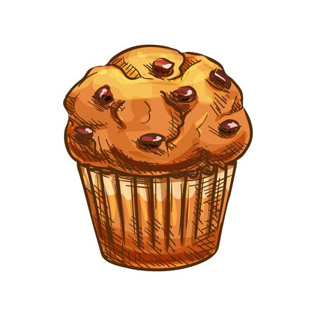Muffin with raisins vector, bakery product sketch icon. Pastry food and dried grapes isolated