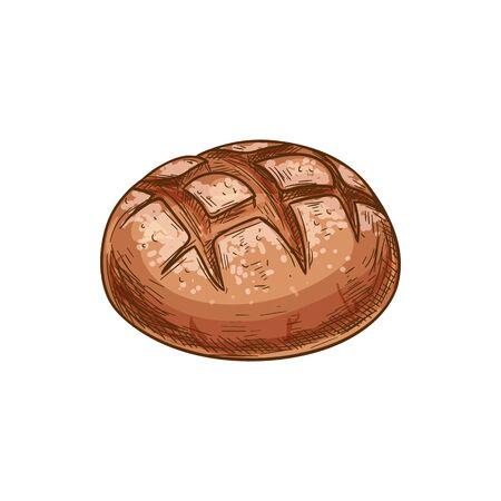 Icône de vecteur de pain, croquis de produit de boulangerie. Petit pain rond brun isolé
