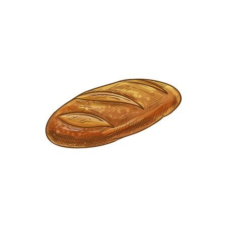 Szkic na białym tle długi bochenek chleba. Wektor długi bochenek, pieczone ciasto bagietka Ilustracje wektorowe
