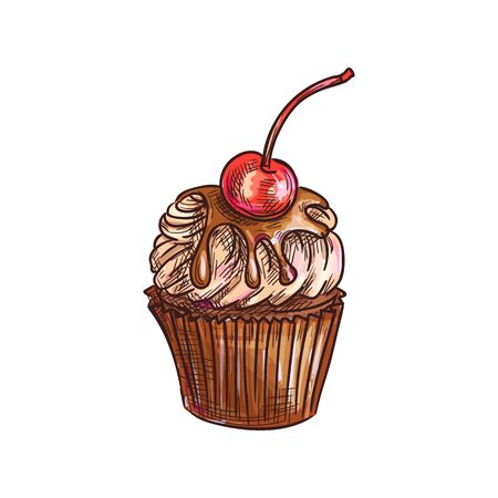 Cake topped by cherry fruit isolated muffin sketch. Vector fruity cupcake with chocolate