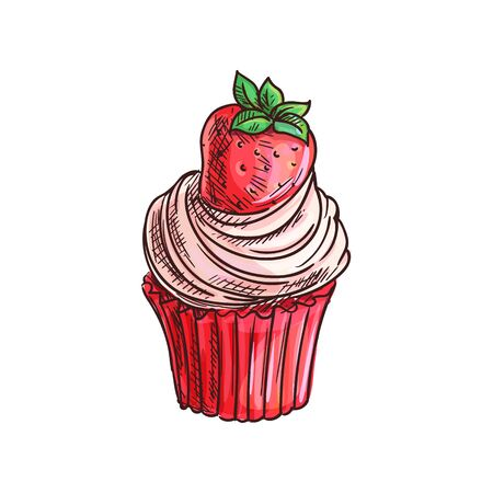 Cupcake, muffin with strawberry fruit isolated sketch. Vector cake topped by summer berry  イラスト・ベクター素材