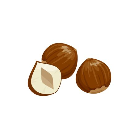 Hazelnut cobnut or filbert nut isolated food snack. Vector nut of hazel whole and cut Stock Illustratie
