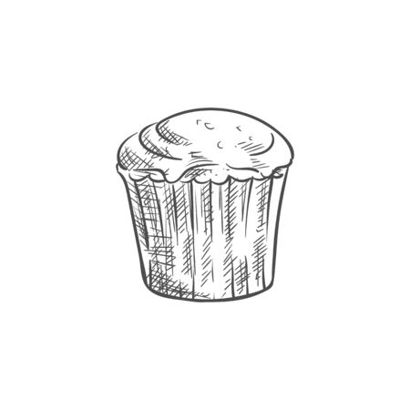 Muffin or cupcake, isolated pastry food sketch. Vector baked muffin, cake bun bakery with buttercream