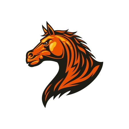 Stallion mustang isolated horse head. Vector equestrian sport mascot, racehorse animal Illustration