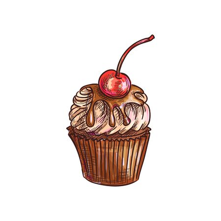 Chocolate muffin cupcake with cherry isolated cake sketch. Vector fruity dessert in baked basket