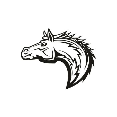 Mustang isolated horse head. Vector racehorse animal, equestrian sport mascot, horsey tattoo profile