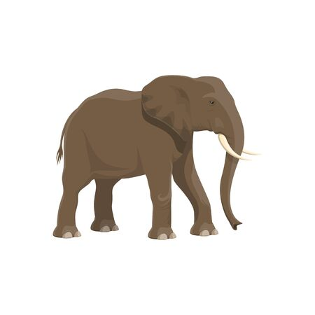 Elefante animal salvaje vector icono aislado. Zoológico de safari africano y elefante trofeo de caza de sabana Ilustración de vector