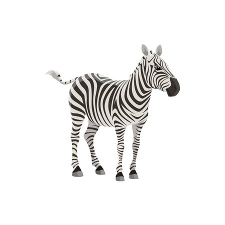 Zebra wild animal vector isolated icon. African safari zoo and savanna hunt trophy zebra
