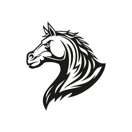 Black horse head profile view isolated mane. Vector purebred stallion side view