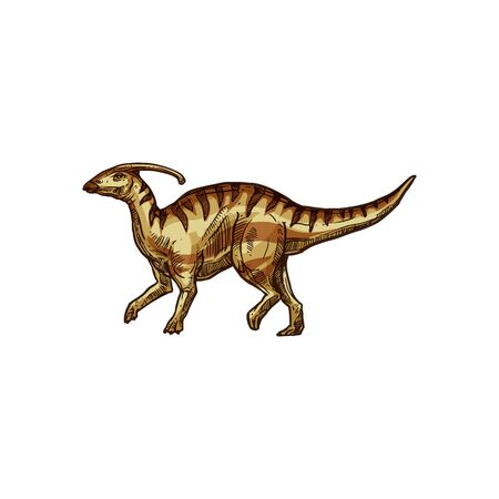 Dinosaur parasaurolophus isolated extinct animal sketch. Vector walkeri dino, extinct prehistoric creature