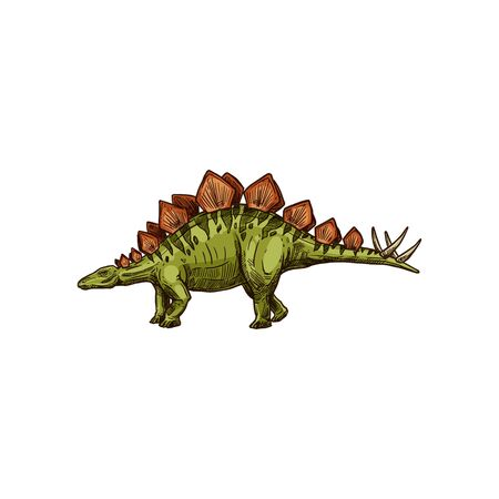 Stegosaurus isolated cartoon triceraptor graze. Vector kentrosaurus prehistoric predator animal