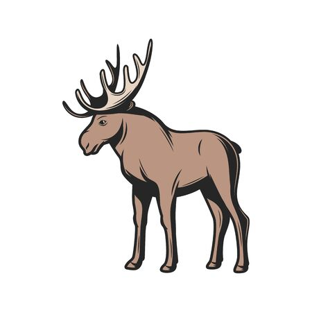 Elk wild animal icon. Vector moose wapiti, elk antler hunt and zoo mammal
