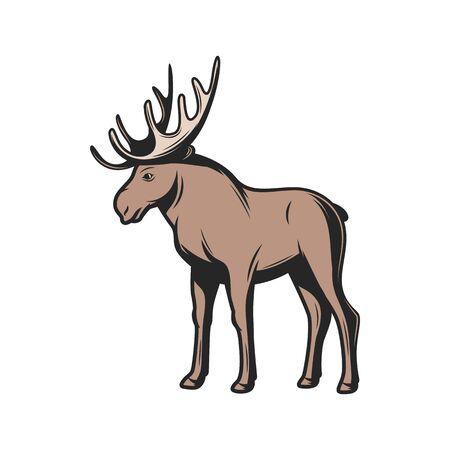 Icono de animales salvajes de alces. Vector alces wapiti, caza de astas de alce y mamíferos de zoológico Ilustración de vector