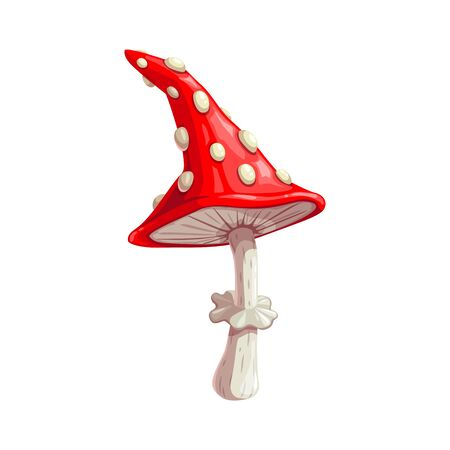Fly agaric icon, mushroom isolated vector. Fungus, Halloween and witchcraft item