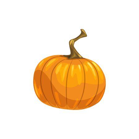 Orange fresh pumpkin with stem isolated autumn vegetable. Vector ripe gourd, fall harvest