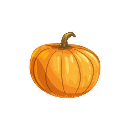 Round pumpkin isolated autumn vegetable, vegetarian food. Vector Halloween holiday decoration