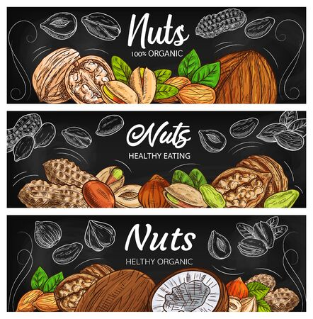 Vector nut, legume and seed chalkboard black banners. Cashew, almond and pistachio, walnut, peanut, hazelnut and coconut color sketches with leaves and nutshells