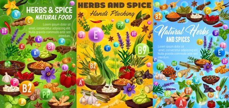 Herbs and spices, vitamin A, B, C, capsules and seasonings. Vector vegetables and condiments, thyme and basil, ginger and min, vanilla and lavender, anise star and rosemary, pepper and cinnamon