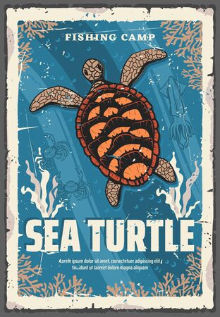 Vector sea turtle, underwater animal in deep sea waters among coral reefs. Turtle with brown carapace  イラスト・ベクター素材