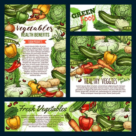 Green food, fresh vegetables and farm product frames sketches. Vector healthy veggies, carrot and cucumbers, pepper and zucchini. Onion and cauliflower, beans and peas legumes, cabbage and potato