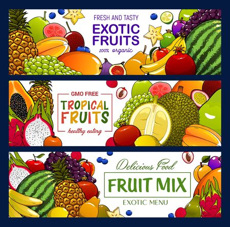 Fruits and berries vector banners. Tropical apple, banana and exotic papaya, grapes, pineapple and jackfruit, lychee, peach and feijoa, fig, watermelon, lemon and carambola banners
