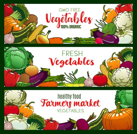 Vegetables, organic farm food veggies and GMO free vegetarian food banners. Vector corn, broccoli and zucchini squash, asparagus and cauliflower, vegan pumpkin and cucumber, carrot, tomato and salads