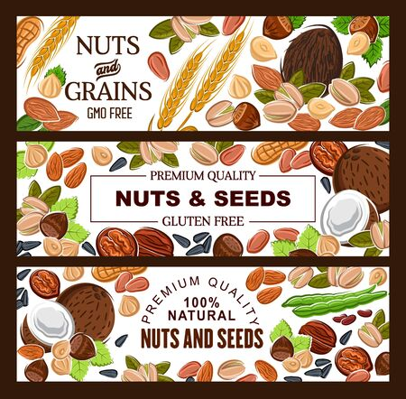 Cereal grains, nuts and seeds, organic GMO free raw vegetarian food, healthy superfood nutrition. Vector natural peanut, hazelnut and almond, coconut, wheat and rye, sunflower seeds and pistachio nuts