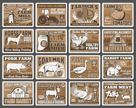 Farm vector design of agriculture barn, harvest field and tractor, animals, vegetables and windmill. Cow milk, chicken eggs and poultry meat, pork, sheep, rabbit farm and horseback riding ranch