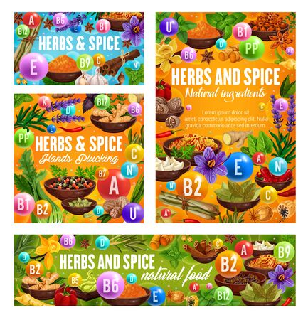 Herbs and spices reach of vitamins vector design. Natural vegetable food, pepper, ginger and cinnamon, vanilla, garlic and nutmeg, star anise, chilli and thyme, rosemary, turmeric and saffron