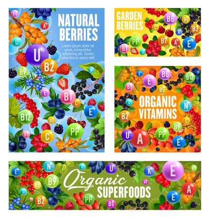 Vitamins and minerals in berries with vector fruits
