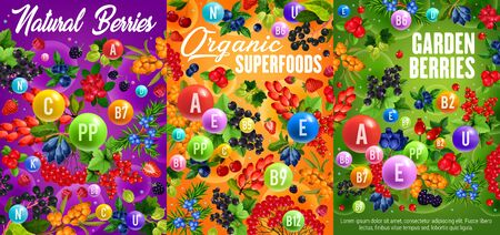 Vitamins in fruits and wild berries vector design of health vegetarian food.