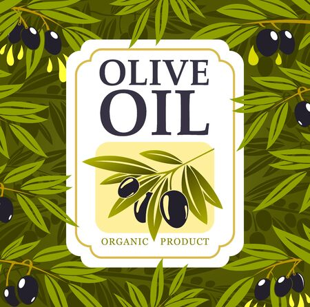 Olive oil organic farm food vector design with olive tree green branches, black fruits and drops of extra virgin oil. Bottle label of vegetarian cooking ingredient of Greek and Italian cuisine