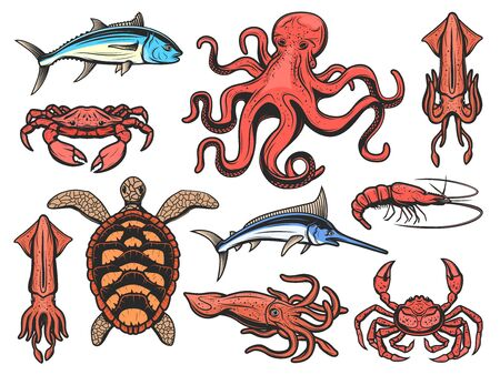 Fishes and marine animals icons, underwater world and fishing. Vector seafood squid, shrimp and prawn, octopus and lobster crab, sea turtle, ocean marlin or swordfish, tuna and cuttlefish