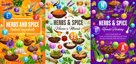 Vitamins in herbs, spices and seasonings natural ingredients. Vegetables and condiments, thyme and basil, ginger and cumin, vanilla, anise star and rosemary, pepper and cinnamon, garlic vector banners Ilustracja
